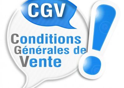 Construire des CGV adaptées et valides