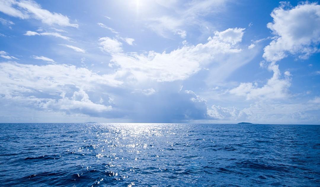 La stratégie Océan Bleu pour changer de cap…