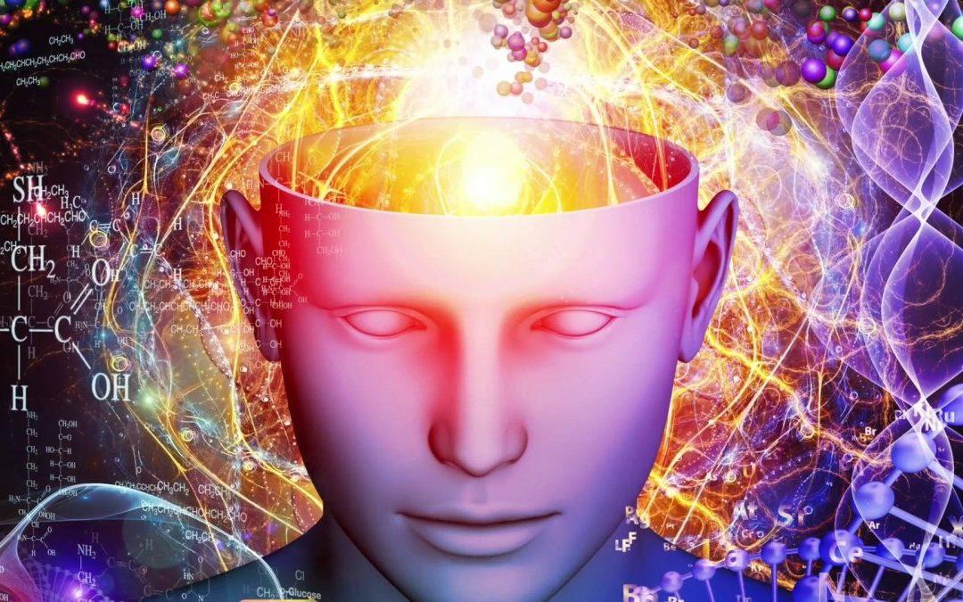 Entreprise apprenante : comment permettre à notre cerveau de mieux apprendre ?