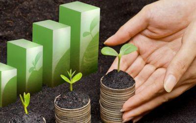 Et si la RSE était l'occasion d'adapter son management pour gagner en performances et en rentabilité ?