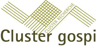 Cluster Gospi - INP Grenoble
