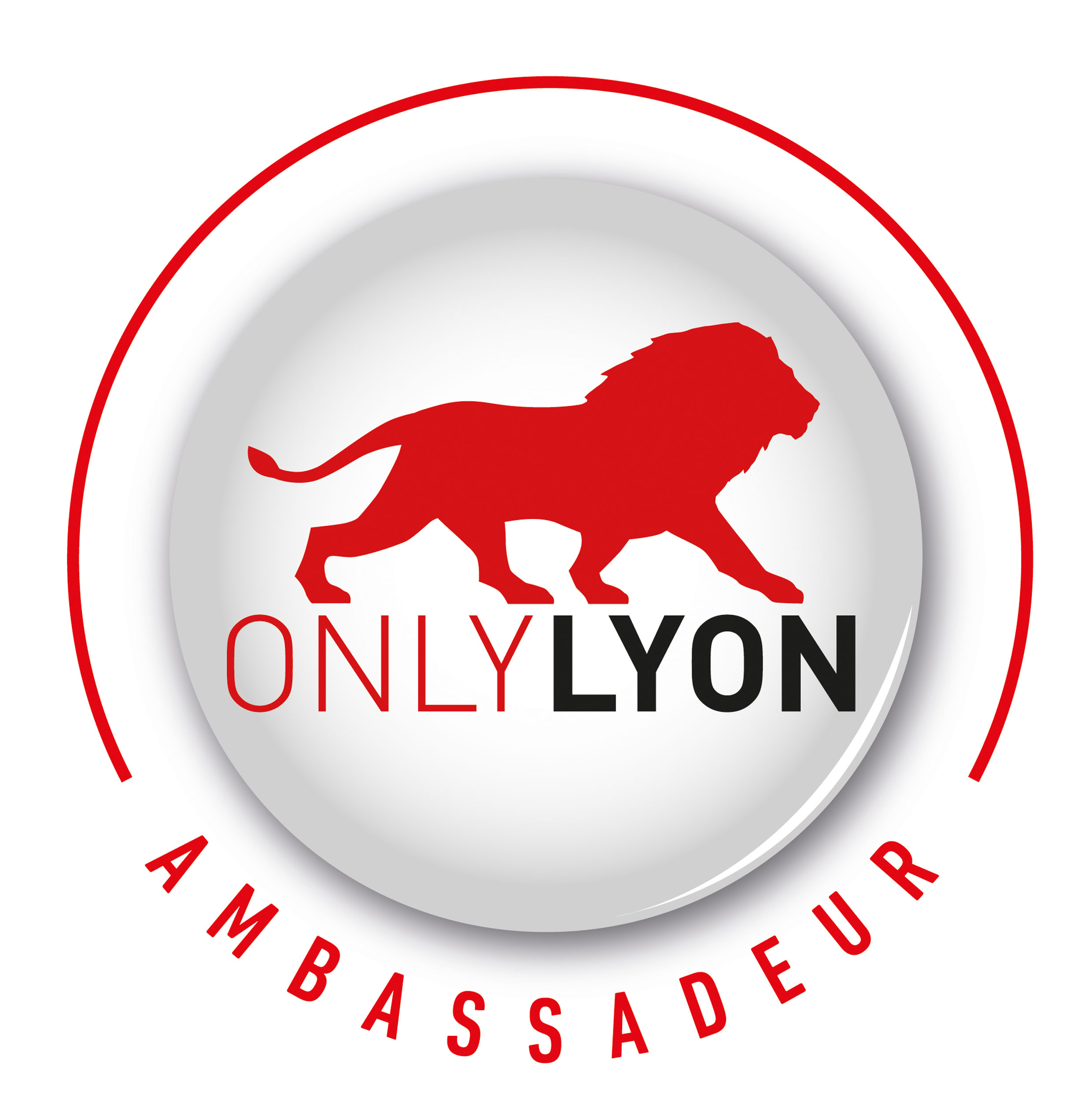 Faire rayonner Lyon à l'international